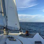 Un catamaran de 50 pieds
